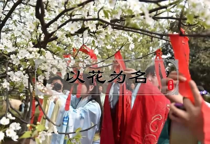 以花为名:这个曾与中秋节齐名的重要节日,如今却为何少有人知?